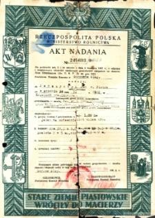 Jan Pańczyszyn, syn Piotra - Akt nadania Nr 245693